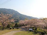 塔重山公園