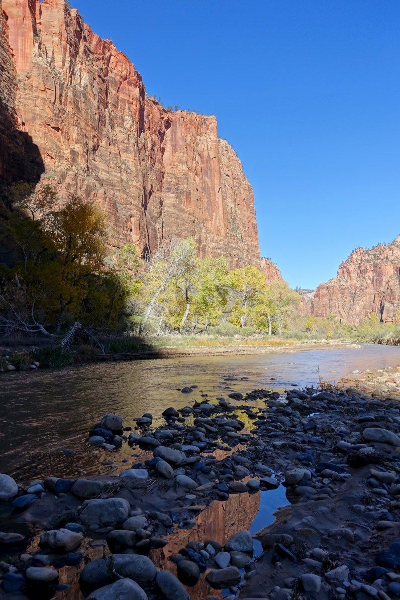 The Virgin River at Big Bend in Zion Canyon