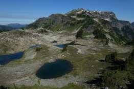 Tomyhoi Peak and tarns below Yellow Aster Butte