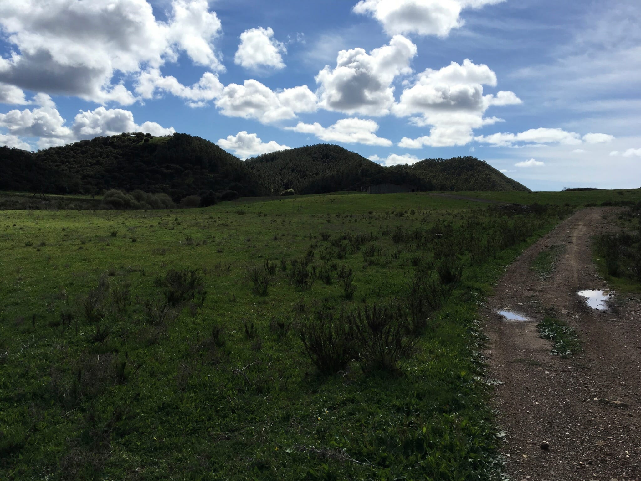Farm before Bordeira