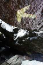 Blaze on a boulder in King Ravine