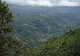 Kalihiwai River from Hihimanu Ridge