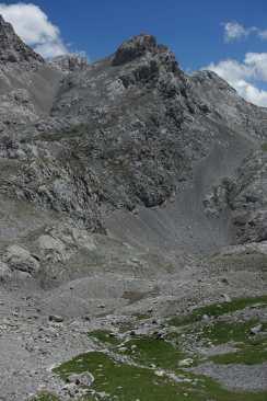 Chamois grazing in a small green area beneath a tall mountain peak