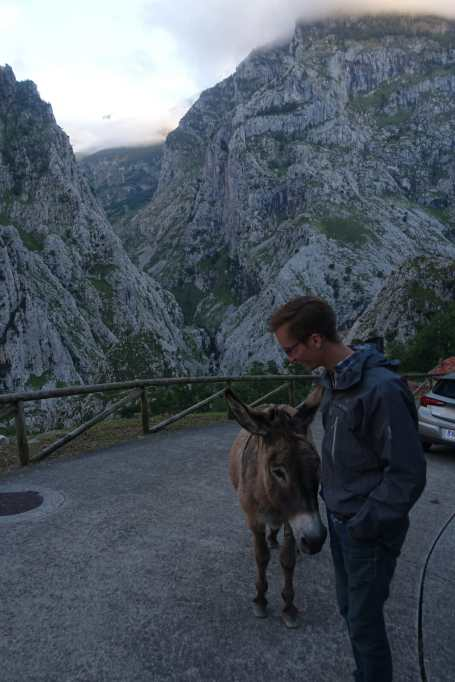 A burro stands in the road next to Kyle, with steep mountains in the background