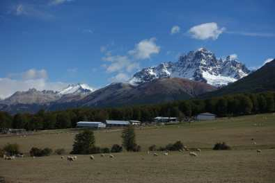 Cerro Castillo, with sheep gazing in the foreground