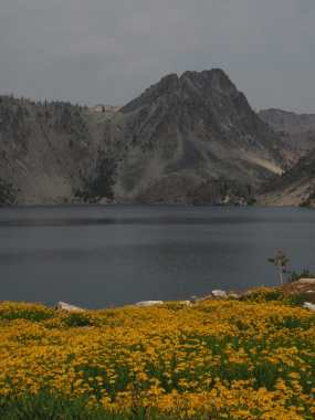 Wildflowers and Sawtooth Lake