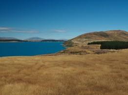 Peninsula Walk at Lake Tekapo