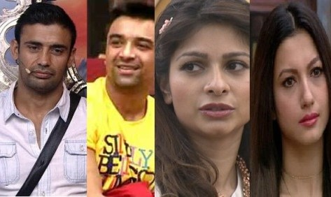 Final Four Bigg BOSS 7 Contestants