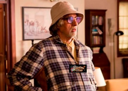 Big B in Piku-showbizbites-feat