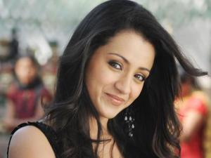 Down South: Trisha's Physical Fight with Dhanush