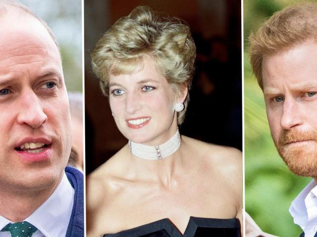Prince Harry & William Put Royal Feud Aside To Slam BBC Over Princess Diana Interview: She 'Lost Her Life Because of This'