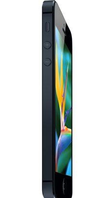 Apple iPhone 5 (6)