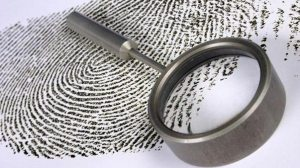 Provedores de internet vão monitorar e punir quem fizer downloads ilegais 7