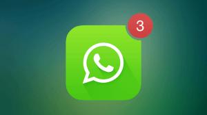 Nova atualização do WhatsApp oculta última conexão 23