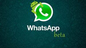 WhatsApp libera Beta para Android; Saiba como entrar no programa 12
