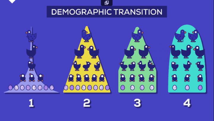 Pirâmide população