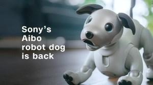 Nova versão do cãozinho robô da Sony, o Aibo, é anunciada 17