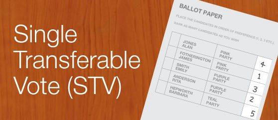 A solução para as eleições no Brasil: Single Transferable Vote 5