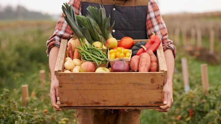 naom 5887c20898d29 720x405 - Projeto de Lei limita venda de produtos orgânicos e causa polêmica