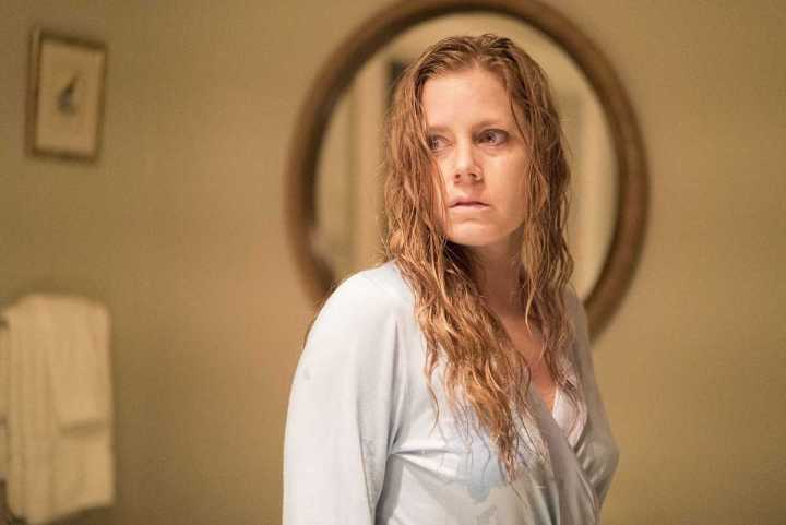 camille 720x481 - Sharp Objects: Amy Adams brilha em adaptação literária da HBO