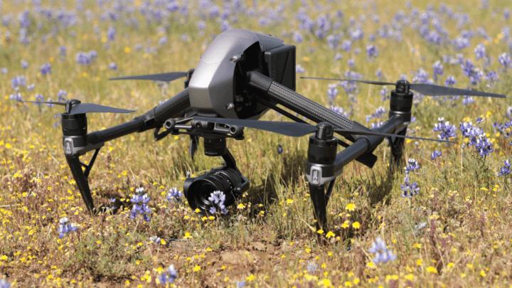 Drone DJI Inspire 2 em um jardim