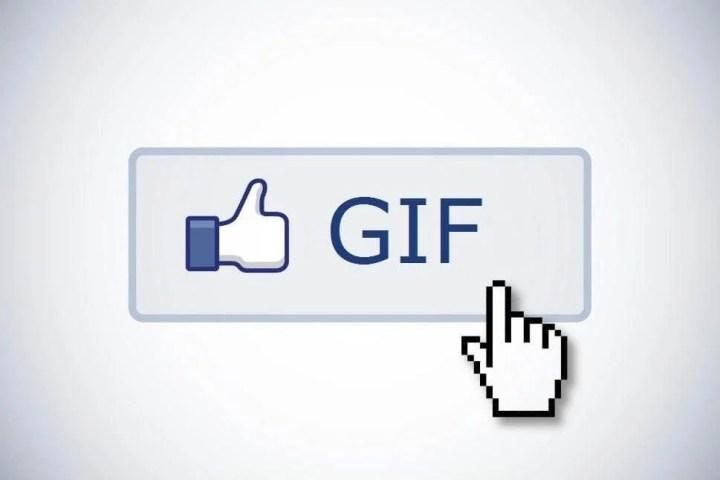 facebook gif 720x480 - Facebook agora suporta GIFs