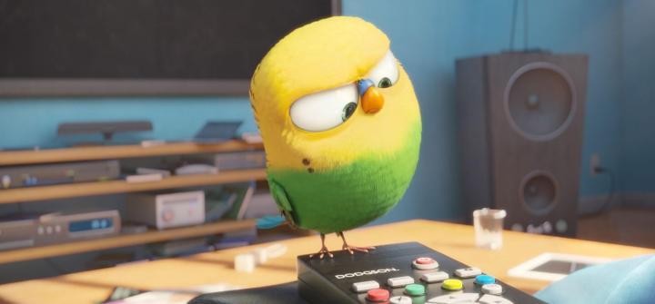 Pirulito, o passarinho gamer