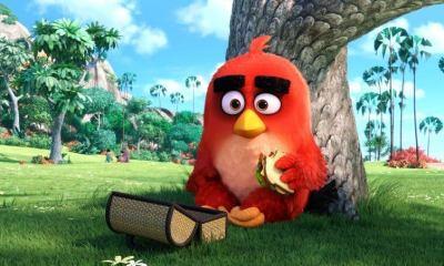 angry birds filme - Confira o teaser de Angry Birds o filme!