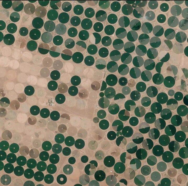 Irrigação por pivô central, Wadi As-Sirhan Basin, Arábia Saudita, 16 de junho de 2015. (Daily Overview)