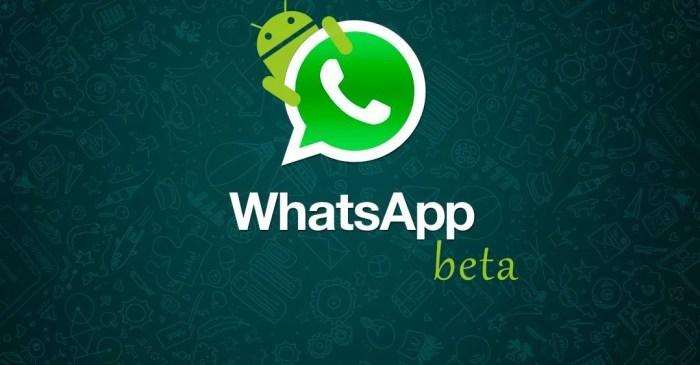 whatsapp beta android smt 720x375 - Whatsapp: nova atualização deixa você mudar a fonte do app