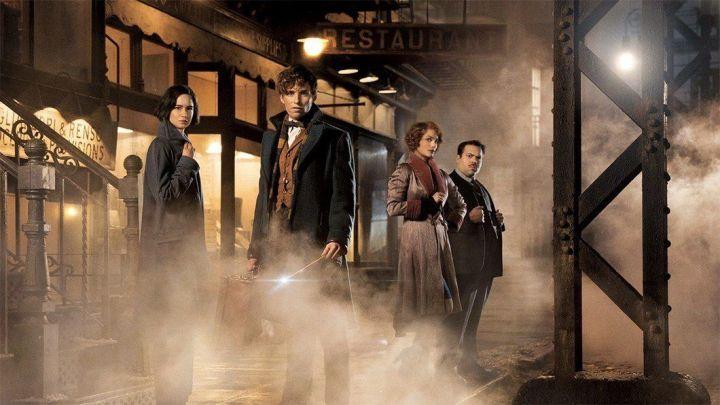 """animais fantasticos e onde habitam divulgacao 720x405 - """"Animais Fantásticos e Onde Habitam"""", spin-off de Harry Potter, ganha trailer"""