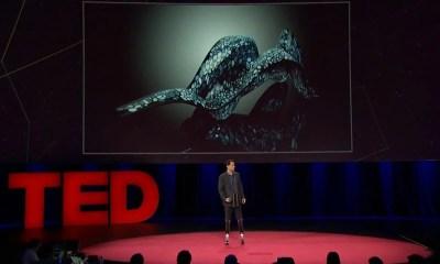 smt Hugh Herr Capa - TED Talks: Hugh Herr mostra que o homem biônico já existe