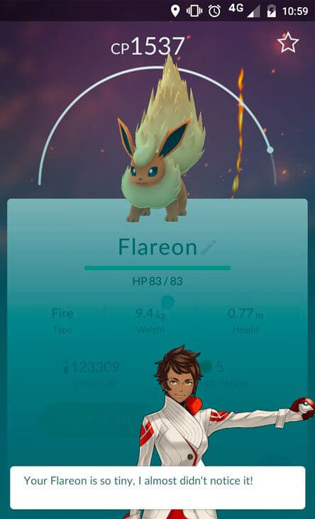 """""""Seu Flareon é tão pequeno, eu quase não notei ele""""."""