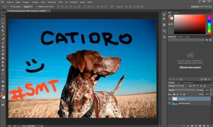 catioro 720x430 - Shutterstock lança plugin para Photoshop