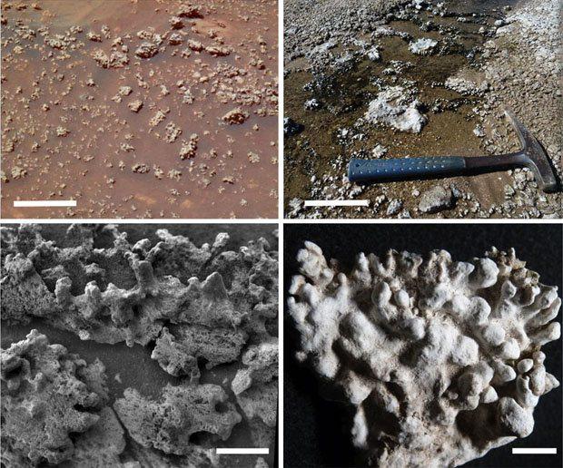 Vida em Marte pode ter sido descoberta.