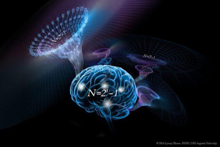 formula do cerebro 720x484 - Algoritmo da inteligência pode ter sido descoberto
