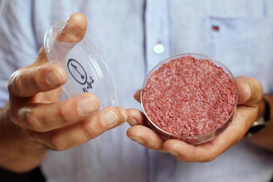 Pesquisadores revelam maneira de comer carne de verdade sem matar animais