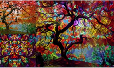 tree image psychedelic deepdream google