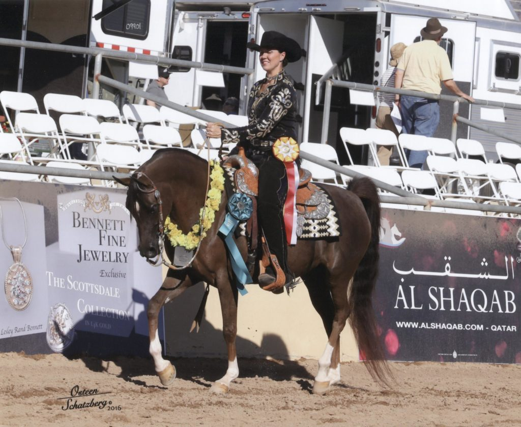 BSF Elegance and Cori Sampson Vokoun winning reserve champion at the 2016 Scottsdale Show