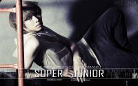 "Super Junior ""No Other"" Hee Chul"