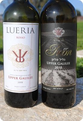 Leuria Winery 026