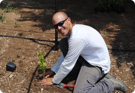 cs planting 091