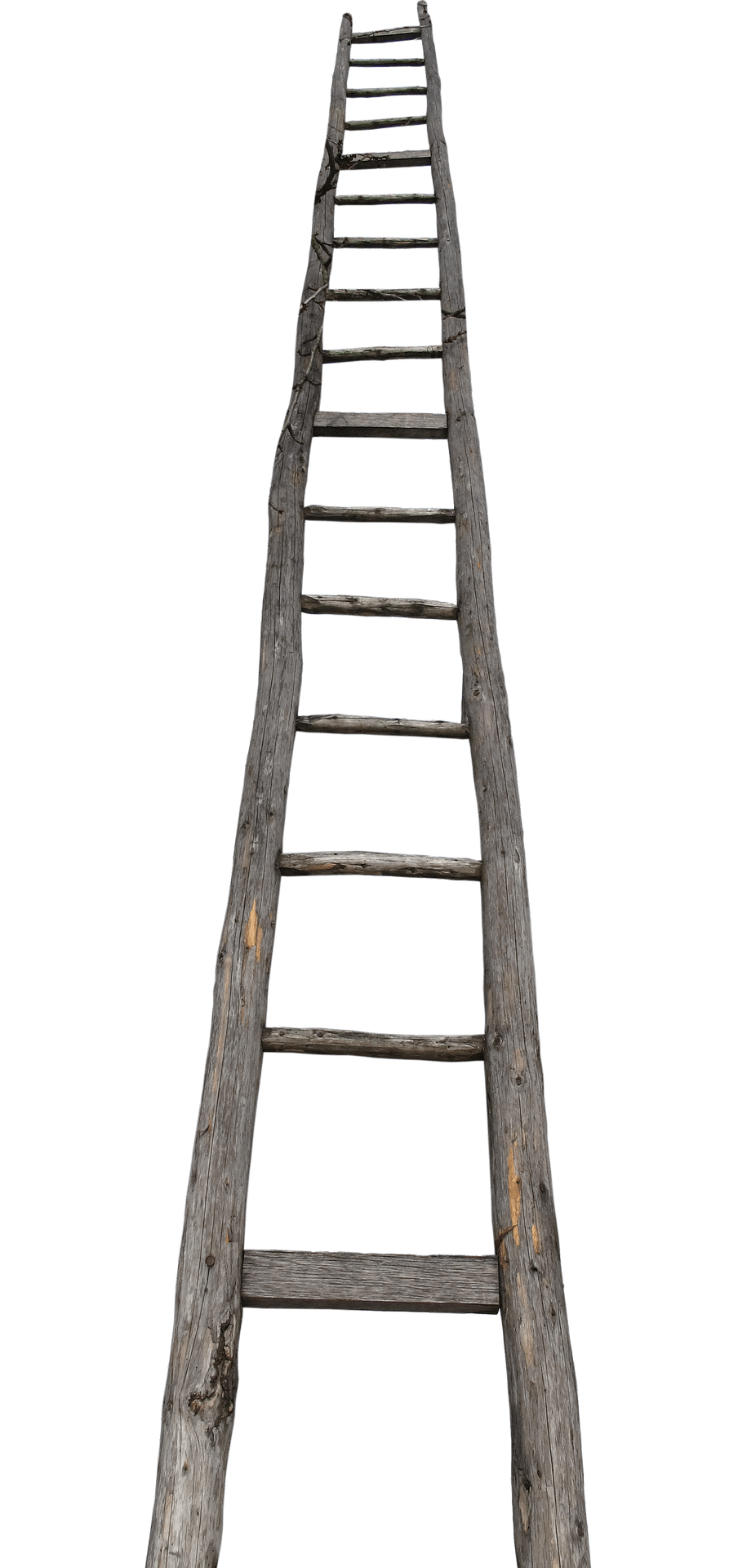 Farming firm fined after ladder fall