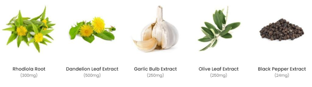 Supergreen Tonik Ingredients 2