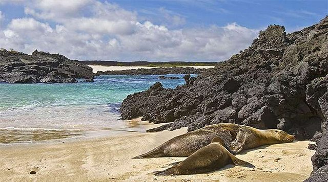 Ecuador and the Galapagos Islands 6