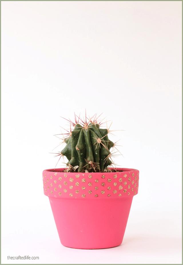 10 Cactus Crafts 8
