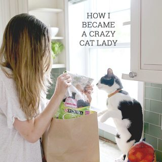 How I Became a Crazy Cat Lady (Spoiler Alert: It's Genetic)