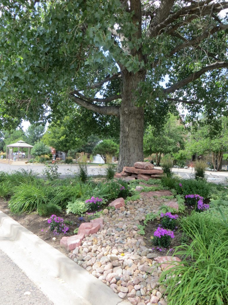 Colorado Springs Gardens