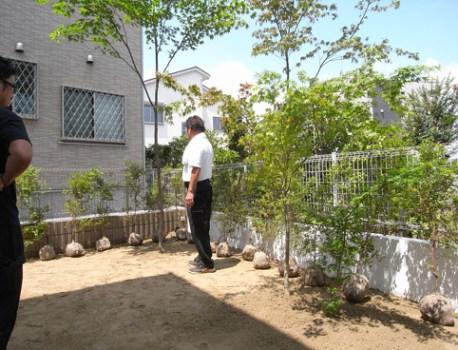 モミジ とトキワマンサク を植樹。外構が緑豊かになりました