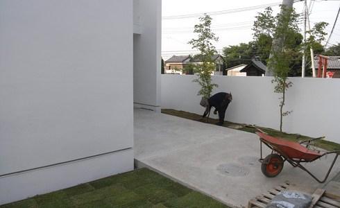 芝生張りの施工状況